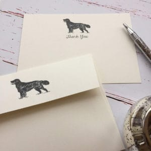 Thank you cards with a Retriever illustration